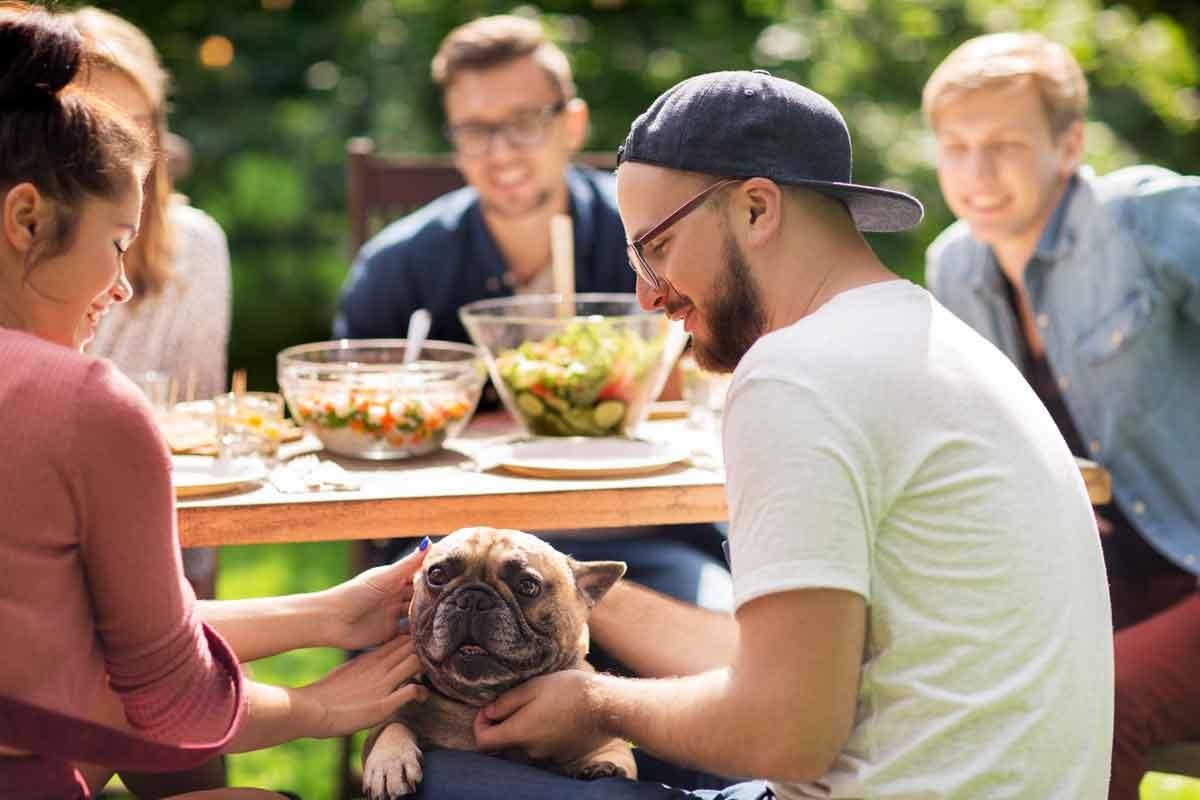 buiten eten in vakantiepark met hond