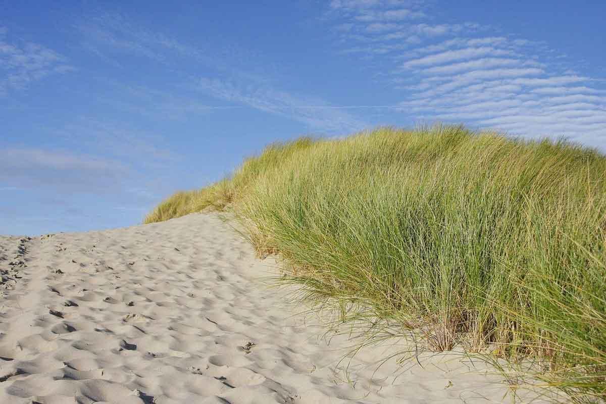 strandopgang via de duinen
