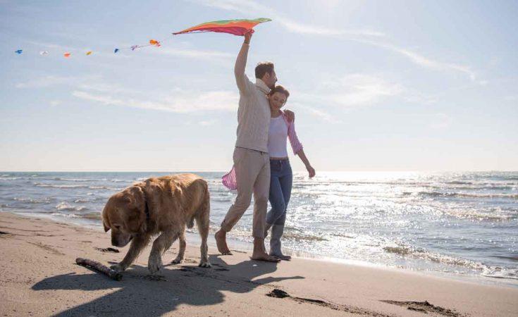 vakantiepark aan zee met hond